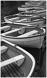 (GSJ)   Boats situated somewhere in a Wolverhampton Park. West Middlands