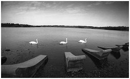 (1H)   MANVERS LAKE in the Wath area of Rotherham