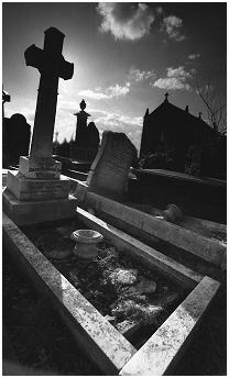 (5C)   Many parts of the cemetery have been subjected to years of neglect and vandalism