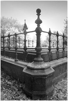 Some gravestones are surrounded by fine iron railings